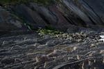 Суровый баскский пляж