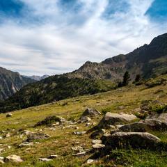 Альпийские луга Пиренейских гор