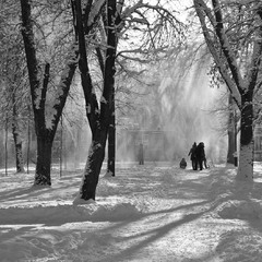..И выпал снег
