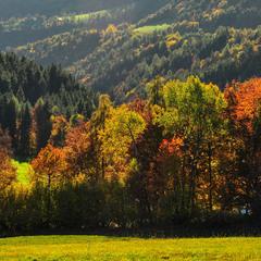 Альпійська осінь