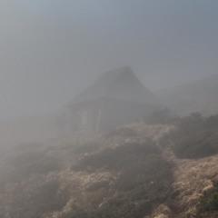 Туманий притулок
