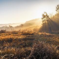 ловец тумана
