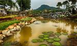 Парк Нонг Нуч, Таиланд