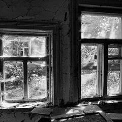 А за окнами жизнь...