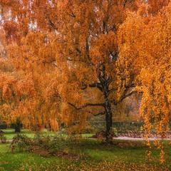 Хозяйка Осени