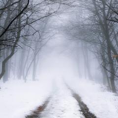 О туманной перспективе