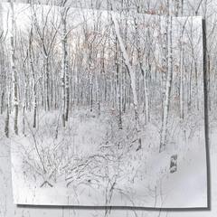 Акварель зимнего леса