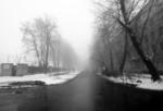 Черно- белая зима.