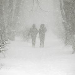 Зима вернулась)