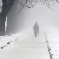Дорога в туман.