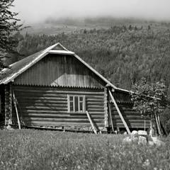 Карпатский домик.