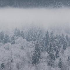 Зимний туман.