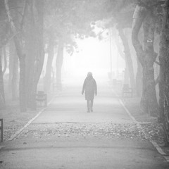 В тумане.
