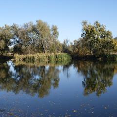 У осенней реки.