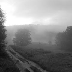 Туман в Закарпатье.
