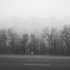 Город в тумане.