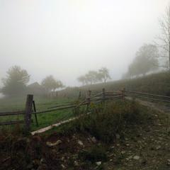 Туманным утром в Карпатах.