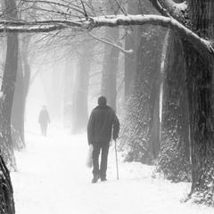 Зимний кадр.