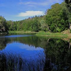 В зелених, тихих берегах, Сховалось озеро...