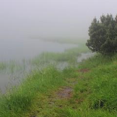 Туман на озері