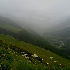 ...знову туман...