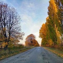 Осінь у дорозі