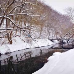 Зимового дня на річці