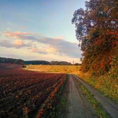 Нормальність — це асфальтована дорога: по ній зручно йти, але квіти на ній не ростуть...