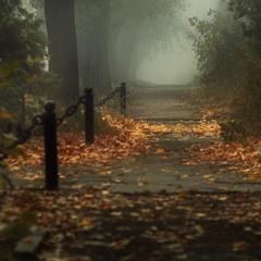 Утренний туман...