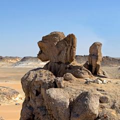 Гаргулья пустыни