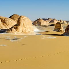 Катя и пустыня