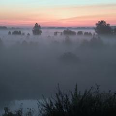 """""""Миколини тумани"""""""
