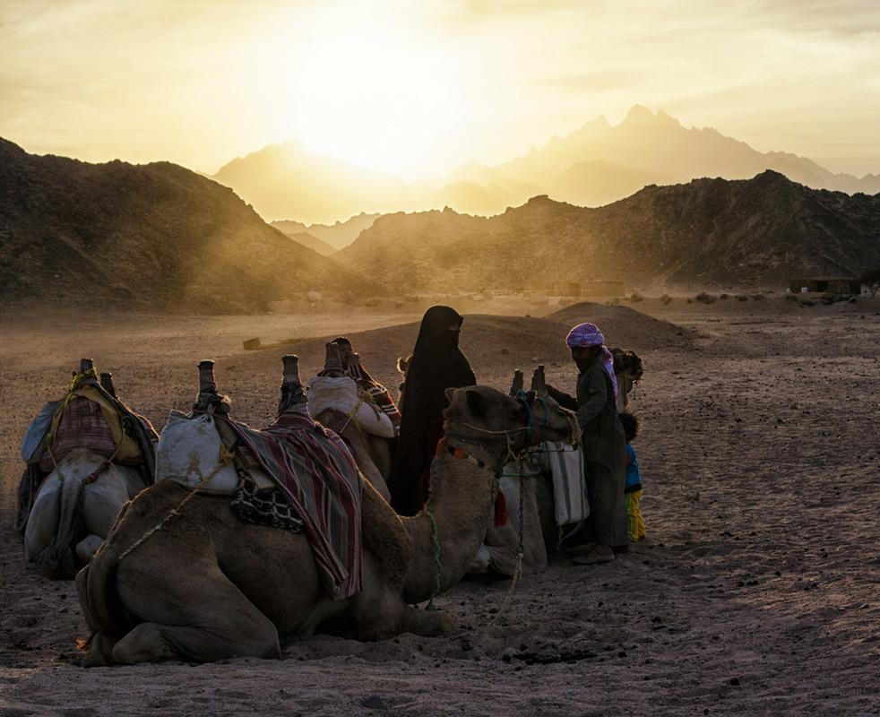 измельчите, картинки кочевников пустыни лазаньи фото
