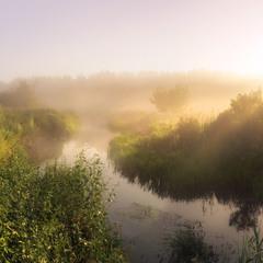 Тече туман шовковий у берегах ріки ранковій