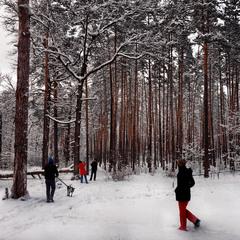 Снігові прогулянки