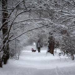 Як подобається мені зима...