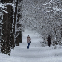 Довгоочікуваний сніг - сфотографуватися не гріх