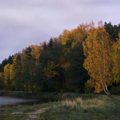 Над ставком осеніло, та сутініло... :)
