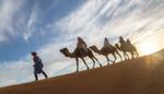 В поисках нового... Марокко!