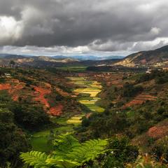 Природа Мадагаскара...