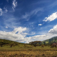 Путешествуя по Танзании!