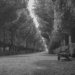 Уходящая в даль... Вена,Австрия.(архивное).