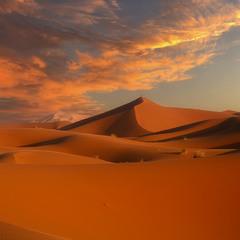 Одинокий путник...Пустыня Сахара.Марокко!