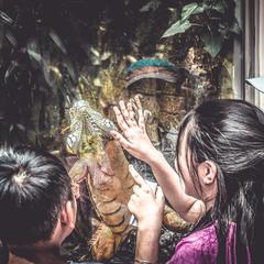 """""""Все мы дети одной планеты..."""".ZOO Сайгон,Вьетнам."""