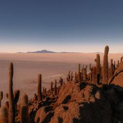 Вечерело.Остров Инкауаси... Боливия!