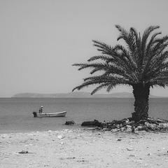 Рыбак и пальма... о.Крит.Греция!(архивное).
