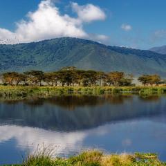 Оазис в саванне...Танзания!
