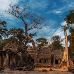 Ангкор-Ват...Камбоджа!