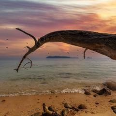 Вечерело... Остров Сапи (Кота-Кинабалу, Малайзия).