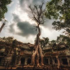 Ангкор Ват...Камбоджа!